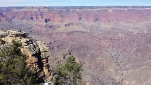 The Canyon was magnificent.